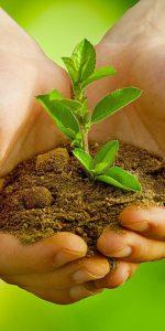 Miljöstädning